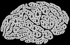Brain for Aunty Sprout Mental health Self-Harm