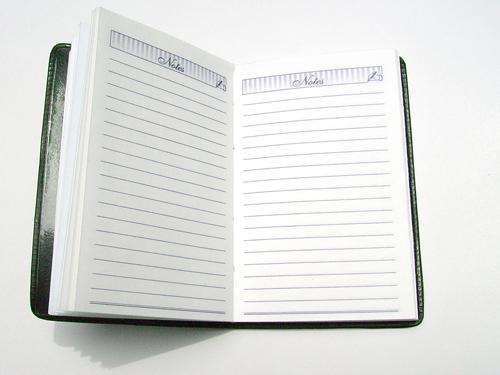 newopen-diary_gjzzbwdo
