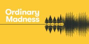 ordinary madness logo