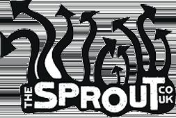 Sprout Cymraeg : Newyddion a Gwybodaeth i Bobl Ifanc Caerdydd