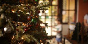 selective-focus-photography-of-christmas-tree-near-boy-3186667